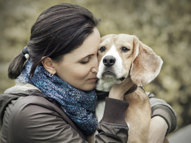 Cães têm capacidade de reconhecer emoções humanas. - Crédito: Foto: Divulgação