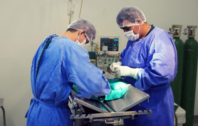 Programa oferece três vagas para profissionais graduados. - Crédito: Foto: Divulgação