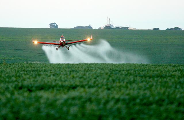 Fungicidas à base de Prochloraz são utilizados em culturas como cebola, cenoura, cevada, cítricos, manga, tomate e trigo. - Crédito: Foto: Divulgação