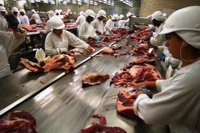 Arábia Saudita habilita exportação de carne de nove frigoríficos sul-mato-grossenses. - Crédito: Foto: Divulgação