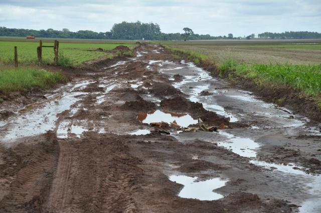 Estradas estão alagadas e intransitáveis na placa do Abadio. e produtores estão enfrentando dificuldades de escoar grãos, prejuízos passam de R$ 100 mil. - Crédito: Foto: Hédio Fazan
