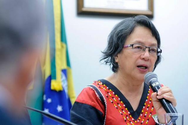 Relatora da ONU diz que a situação dos indígenas tende a se agravar caso não sejam tomadas medidas por parte do governo. - Crédito: Foto: Fabio Rodrigues Pozzebom/Agência Brasil