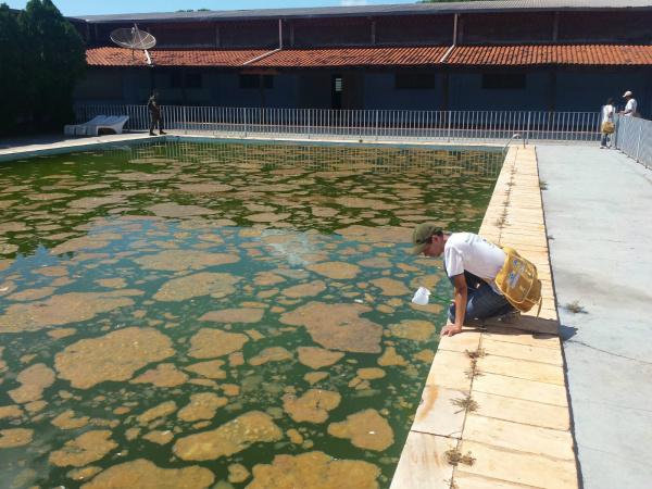 CCZ notificou clube de Dourados por falta de manutenção na piscina. -