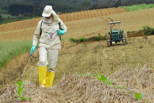 Além do crescimento de culturas transgênicas, o mercado de agrotóxicos cresceu mais de 400% - Crédito: Foto: Divulgação