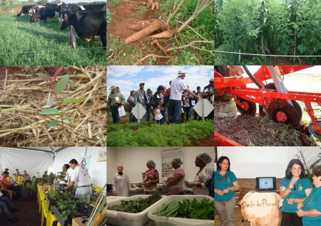Tecnologia para a agricultura familiar será apresentada pela Embrapa durante o Tecnofam 2016. - Crédito: Foto: Divulgação