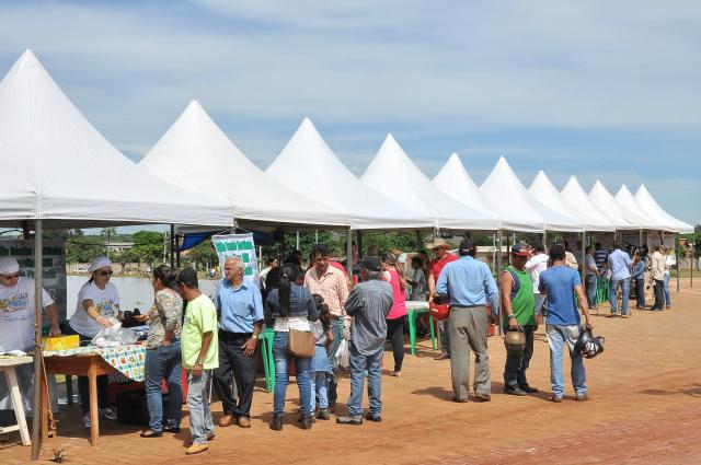Comércio na Festa do Peixe possibilita aos consumidores adquirir peixes frescos com bons preços. - Crédito: Foto: Assecom
