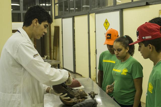 Uma das opções na área da saúde é o curso de Anatomia. - Crédito: Foto: Unigran