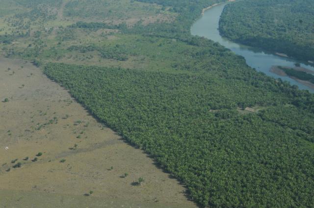 O CAR, de acordo com o MMA , fomenta a formação de corredores ecológicos e a conservação de recursos naturais no Brasil. - Crédito: Foto: MMA