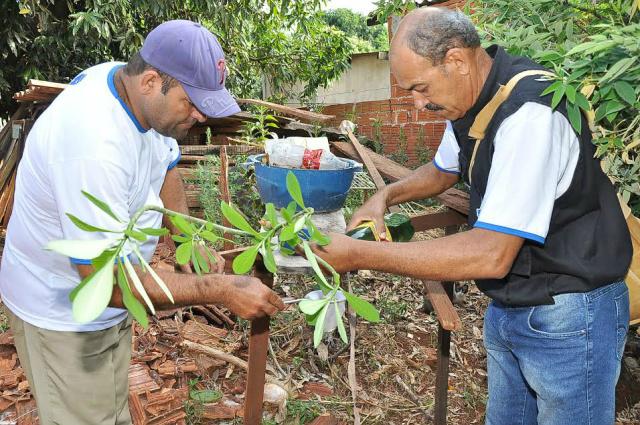 Equipes da Saúde continuam a campo no combate ao mosquito. - Crédito: Foto: Divulgação
