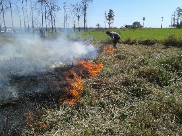PMA autua assentado em R$ 11 mil por incêndio em 11 hectares de área de pastagem. - Crédito: Foto: Divulgação