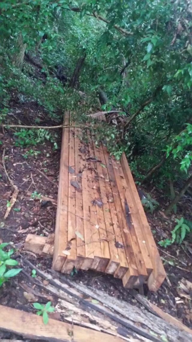 PMA autua dono de chácara em R$ 5 mil por exploração de madeira na área protegida de reserva legal. - Crédito: Foto: Divulgação/PMA