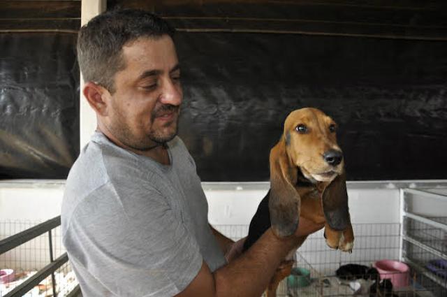 O veterinário Paulo Zamora com o filhote da raça Basset, um de seus animais exposto nas baias Foto: Hedio Fazan -