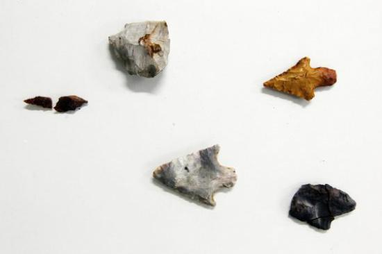 Em laudo elaborado recentemente por um laboratório americano, constatou-se que um sítio de São Manuel, na região central do Estado, era habitado por um povo pré-colombiano há 11 mil anos. - Crédito: Foto: Divulgação/Estadão