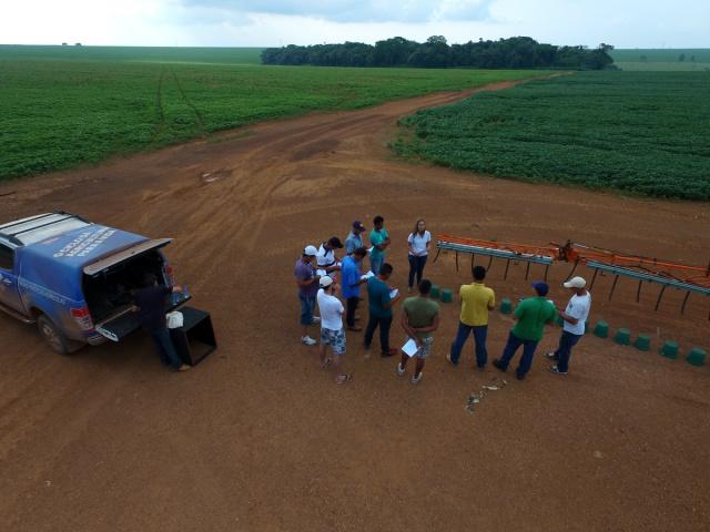 Desenvolvido pela Dow AgroSciences em parceria com a Universidade Estadual Paulista - Crédito: Foto: Divulgação