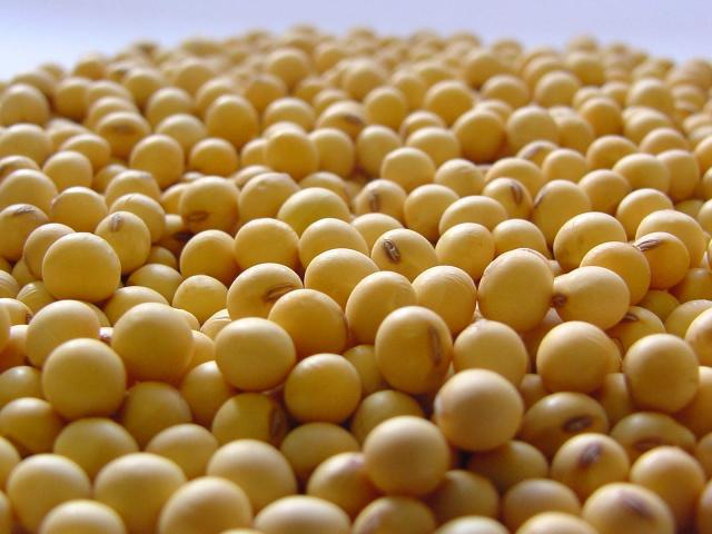 O Estado inscreveu 308 produtores, o terceiro maior número de participantes entre os que estão na disputa. - Crédito: Foto: Divulgação