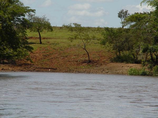 Arquiteto e Urbanista Luiz Carlos Ribeiro diz que projeto deveria incluir ações em favor do meio ambiente, principalmente quanto ao Rio Dourados e seus afluentes -