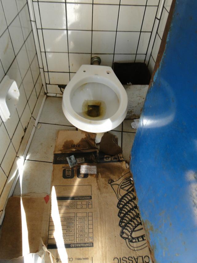 Vaso sanitário da Praça Antonio João. - Crédito: Foto: Carlos Buckholz/O PROGRESSO