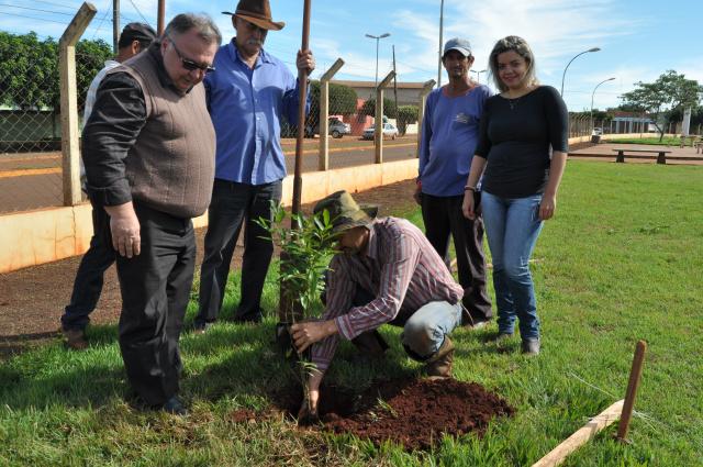 Secretário de Desenvolvimento, Natal Marchioro fez o plantio de árvores em escolas, postos de saúde e praças públicas. - Crédito: Foto: Assessoria
