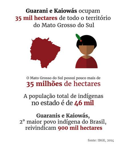 60% dos assassinatos de indígenas do Brasil são no MS -