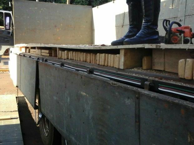Maconha estava em fundo falso da carroceria do caminhão - Crédito: Foto: PMRE/ Divulgação
