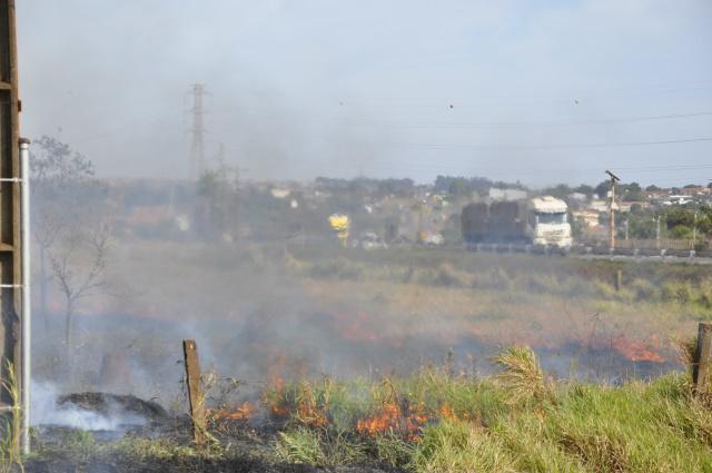 Vegetação seca às margens da BR-163,  na entrada do Dioclécio Artuzi, pegou fogo  em Dourados. - Crédito: Foto: Hedio Fazan
