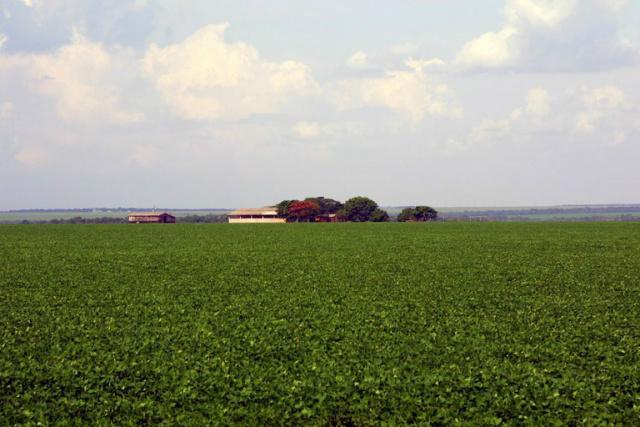 Área plantada teve aumento em relação à safra anterior. - Crédito: Foto:  Edson Rodrigues/Ministério dos Transportes