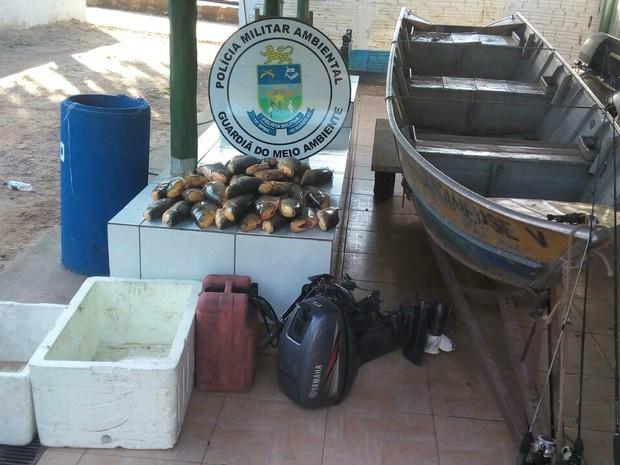 Pescado e materiais utilizados pelos três suspeitos apreendidos pela PMA neste sábado - Crédito: Foto: PMA/Divulgação