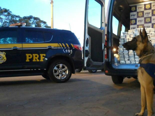 Cocaína estava em fundo falso e foi encontrada com ajuda de cães - Crédito: Foto: PRF/ Divulgação