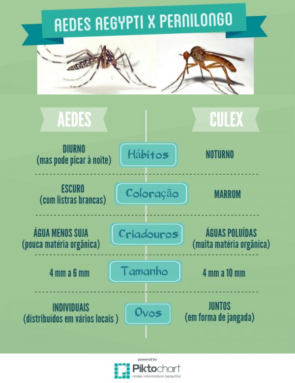 Estudo aponta pernilongo como transmissor do  Zika -