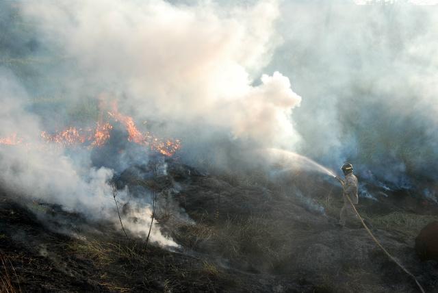 Na segunda maior cidade do estado, Dourados, as queimadas também foram intensas no mês de julho e cresceram 150% no primeiro semestre deste ano. - Crédito: FOto: Hedio Fazan
