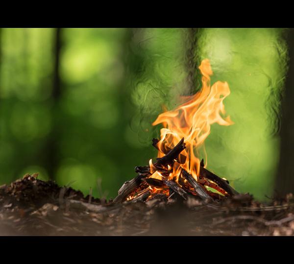 O produtor rural de MS está proibido de realizar a queimada controlada desde o dia primeiro de agosto. - Crédito: Foto: Divulgação