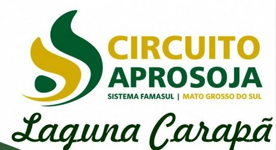 O evento é uma iniciativa da Associação dos Produtores de Soja de Mato Grosso do Sul - Crédito: Foto: Divulgação