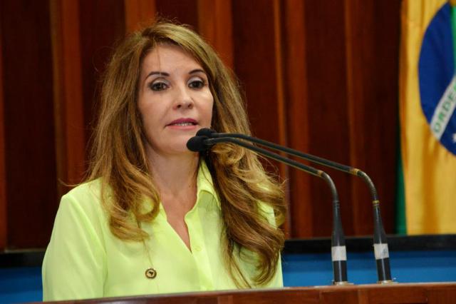 Antonieta defendeu criação de comissão para analisar projetos relacionados às mulheres. - Crédito: Foto: Roberto Higa/ALMS