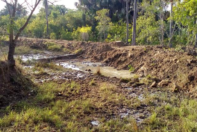PMA autua fazendeiro por degradação de nascentes de córrego -