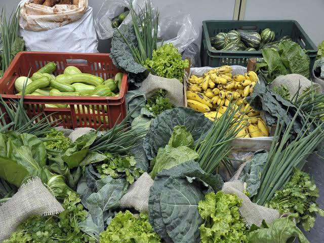 Grande parte do recurso captado deve-se a forte aliança entre os pequenos produtores rurais com a Agraer. - Crédito: Foto: Divulgação