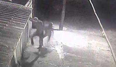 Bandidos invadem residência e atiram contra empresário em Dourados -