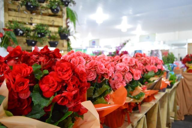 Flores expostas no Pavilhão Aced durante a 12ª Exposhopping - Foto: divulgação -