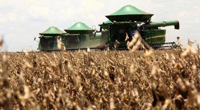 Plano Safra libera recursos a partir de 1º de julho para produtores rurais -