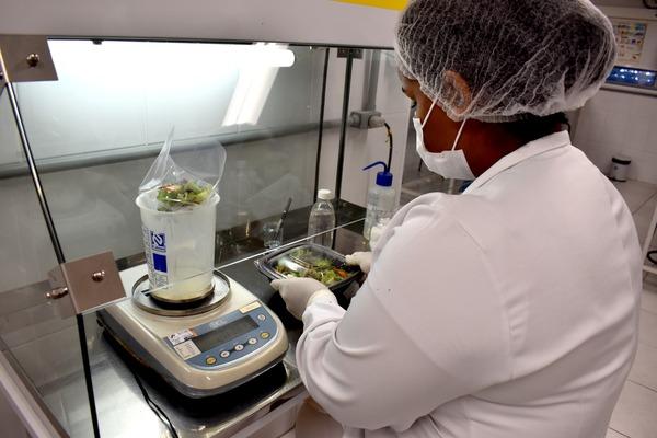 Bactérias encontradas em saladas prontas para o consumo durante estudo em universidade de Campinas - Crédito: Foto: Patrícia Teixeira/G1