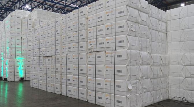 Soja e celulose são os destaques do aumento de 36,1% da balança comercial no primeiro semestre - Crédito: Chico Ribeiro