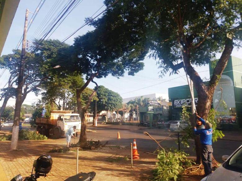 A poda de árvores melhora a iluminação pública - Crédito: Divulgação