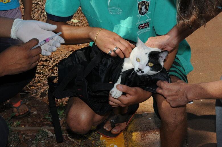 Vacinação antirrábica atende região do Novo Horizonte e Parque do Lago -