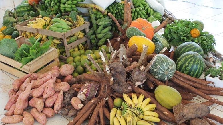 Encontro Nacional de cultivo de hortaliças começa nesta segunda-feira em Bonito -