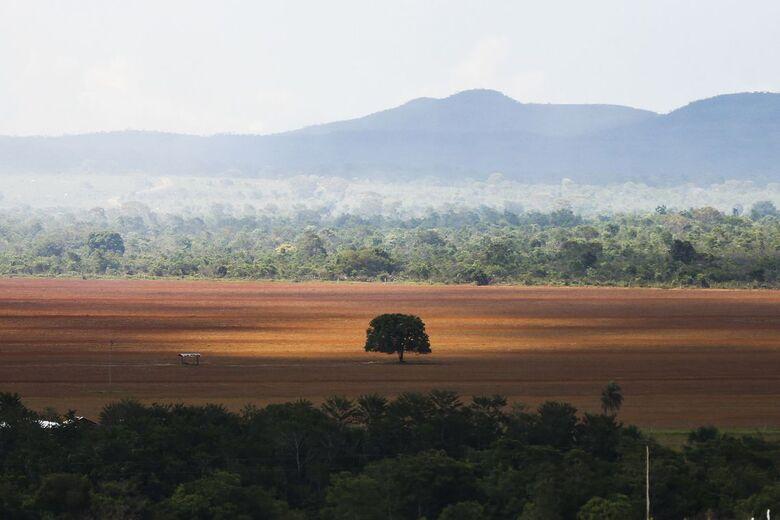 """ONU pede medidas """"inéditas"""" para evitar piores efeitos do aquecimento global - Crédito: Arquivo"""
