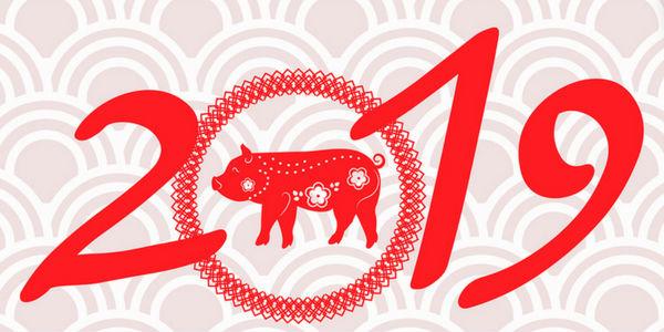Horóscopo chinês 2019: veja como será o ano do porco -