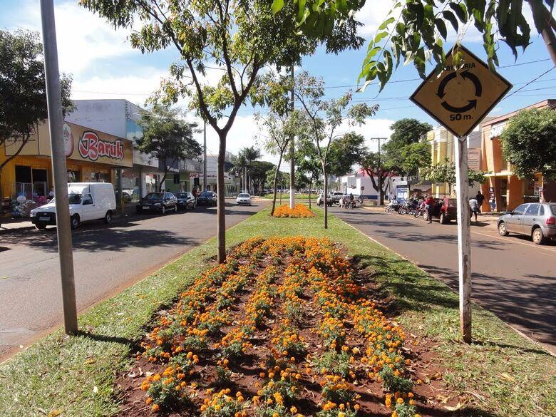 Avenida para na Rua Brasil atualmente - Crédito: Divulgação