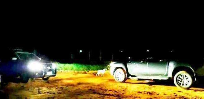 Pistoleiros voltaram a agir na linha de fronteira com o Paraguai - Crédito: Porã News