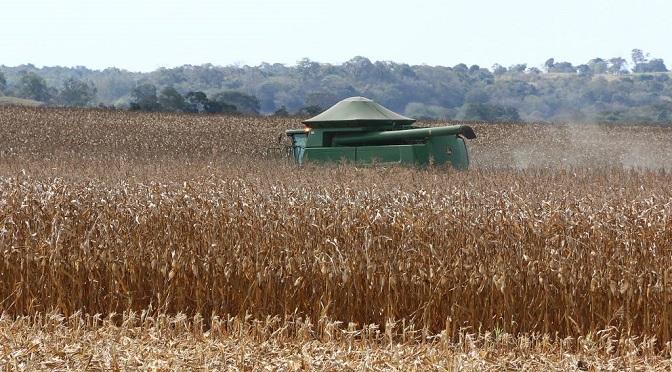 A Região Norte está com quase toda a safra colhida (97%), enquanto na Região Centro a colheita já chega a 79,7% e na Região Sul, 75,9% das lavouras - Crédito: Divulgação