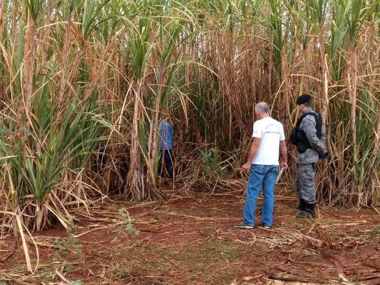 Corpo de jovem de 22 anos foi encontrado em canavial em aldeia de Dourados - Crédito: Osvaldo Duarte