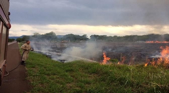 Sem previsão de chuva em MS, população deve tomar cuidado com riscos de queimadas - Crédito: Edemir Rodrigues